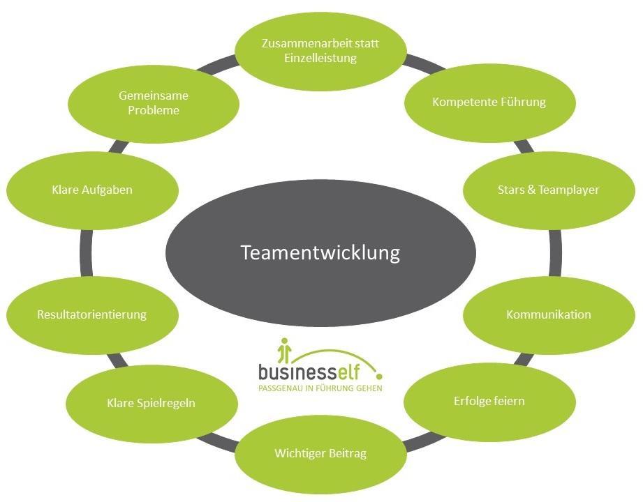 Teamentwicklung und Teambuilding mit der business elf - Managementberatung