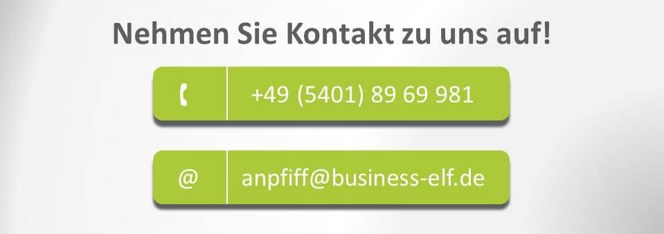 DISG-Profile mit der business elf - Managementberatung