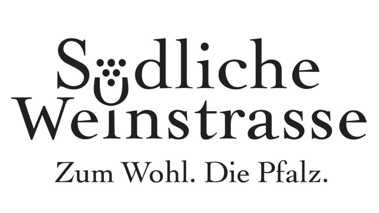 Strategie Workshop beim Verein Südliche Weinstraße e.V.