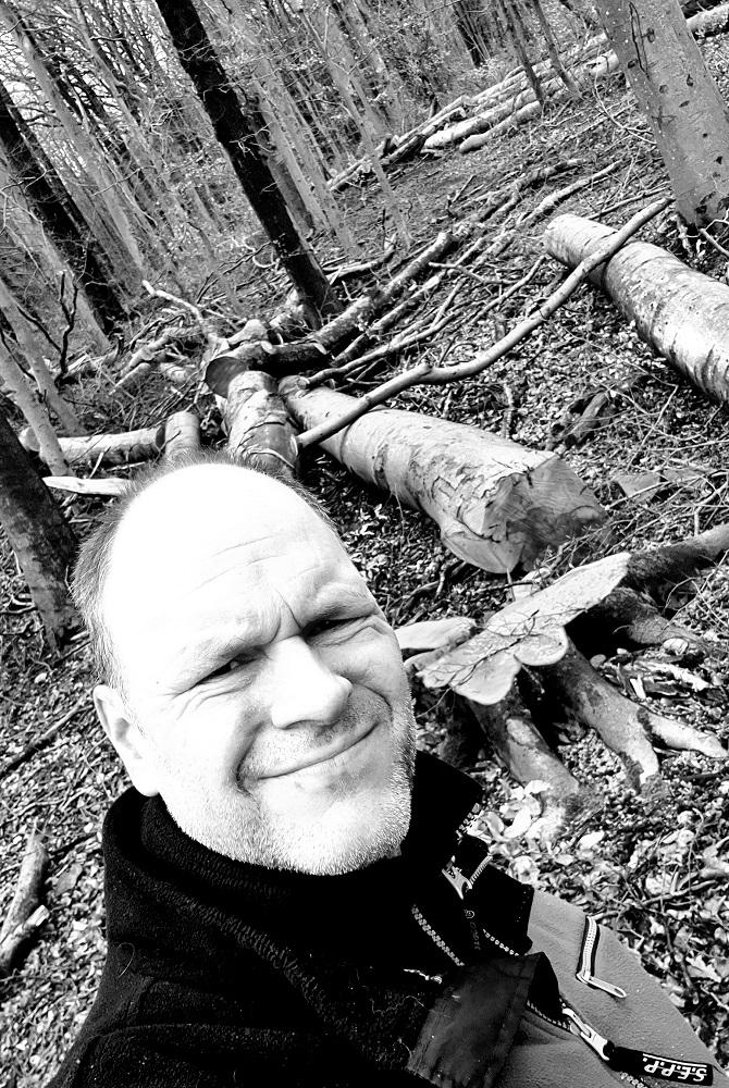 Gesellschaft im Spiegel der Zeit - Klimawandel und Bäume mit Trockenschäden